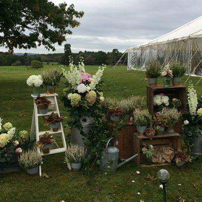 Wedding-Gallery-3